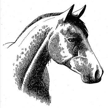 Horse Ink by William Krupinski