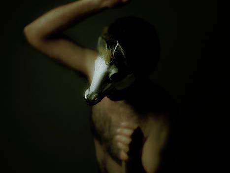 Horse Mask by Mark Wagoner