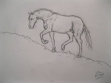 Horse on Hill by Ida Brown