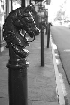 Horse Tie 1 by Jessa DeNuit