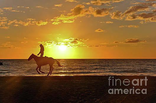 Horseback Riding at Sunset by Elaine Manley