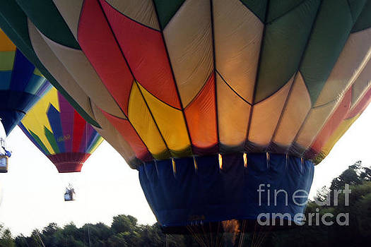 Hot Air Balloon by Debra Crank