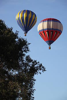 Hot Air Balloons over Dansville NY by Gerald Salamone