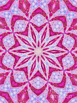 Hot Pink and Blue by Shirley Moravec