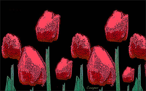 Hot Red Tulips by Peggy Cooper