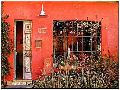 House in the Barrio by Terry Temple