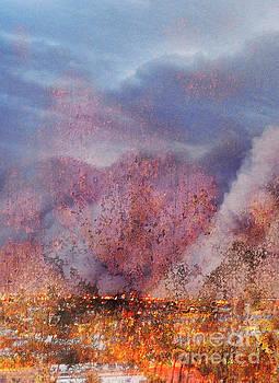 On Fire by Jacklyn Duryea Fraizer
