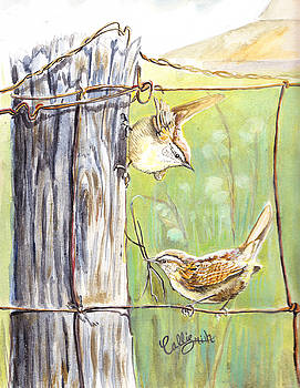 House Wrens by Callie Smith
