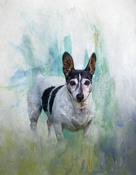 Hubby's favourite boy. by Lyn Darlington