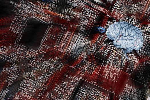 Human Brain, Intelligence And Communication by Christian Lagereek