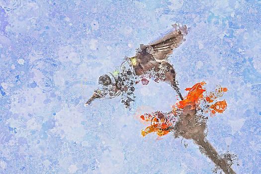 Humming bird wall art by Geraldine Scull
