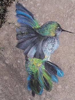 Hummingbird by Beka Burns
