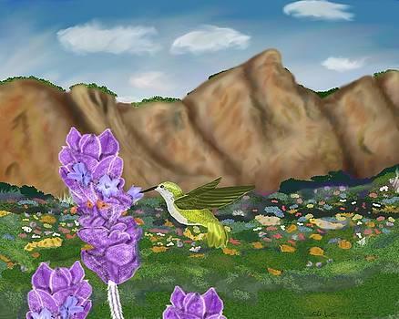 Hummingbird Meadows by Mike Sexton