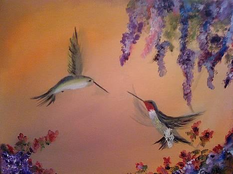 Hummingbirds  by Phyllis Miller