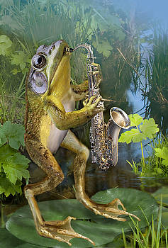 Humorous Frog Plying Saxophone by Gina Femrite