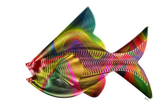 Hungry Fish 2 by Rabi Khan