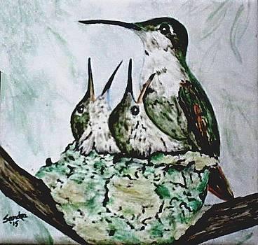 Hungry Hummingbird Family by Sandra Maddox