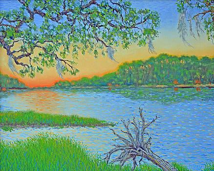 Hunting Island Lagoon 2 by Dwain Ray