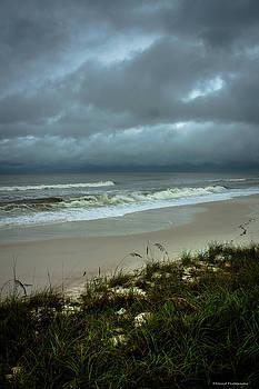 Hurricane Hermine Mexico Beach 2 by Debra Forand