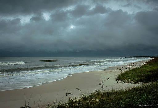 Hurricane Hermine Mexico Beach by Debra Forand