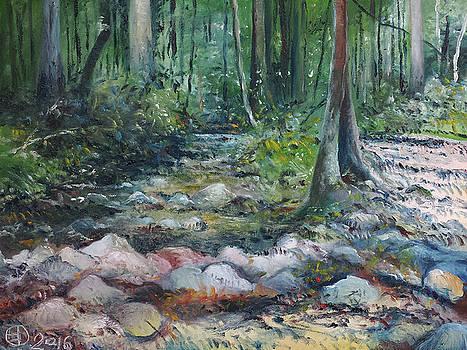 Hutan Perdic forest Malaysia 2016 by Enver Larney