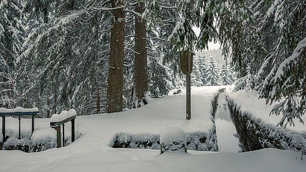 Huttaler Graben, Harz by Andreas Levi