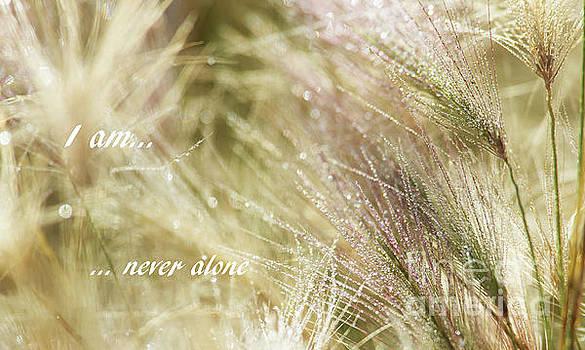 I am... by Nina Stavlund