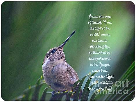 I Am the Light of the World by Debby Pueschel