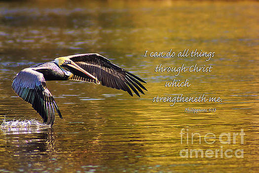 I Can Do All Things by Joan McCool