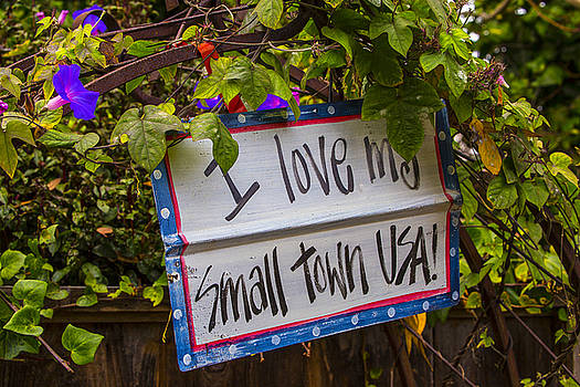 I Love My Small Town Sign by Garry Gay