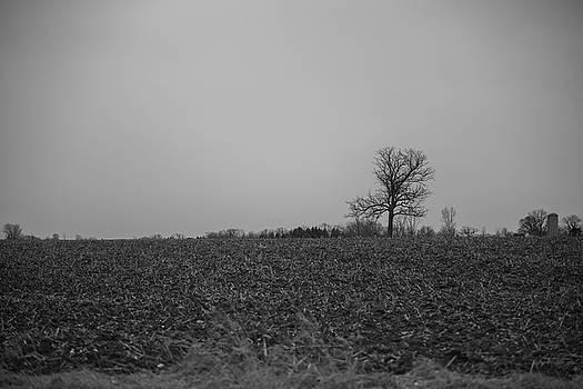I Stand By Myself by CJ Schmit