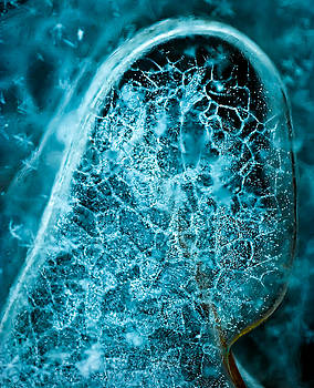 onyonet  photo studios - Ice Abstract Deep Blue