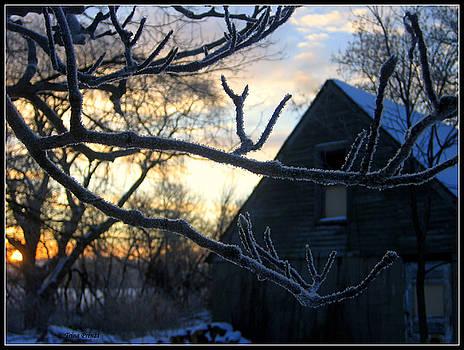 Ice Crystals by Trina Prenzi