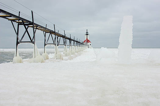 Ice Everywhere by Tammy Chesney