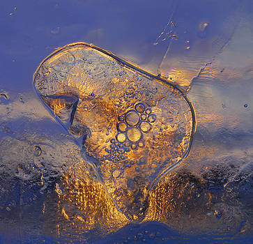 Ice Land by Sami Tiainen