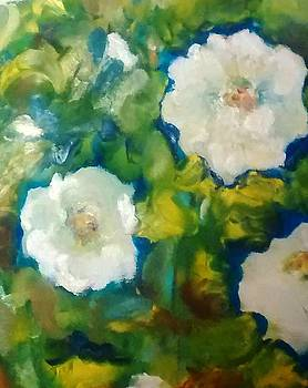 Patricia Taylor - Iceberg Roses