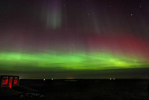 Icelandic Aurora by Jennifer Ansier
