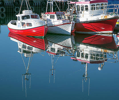 Icelandic marina by Elvira Butler