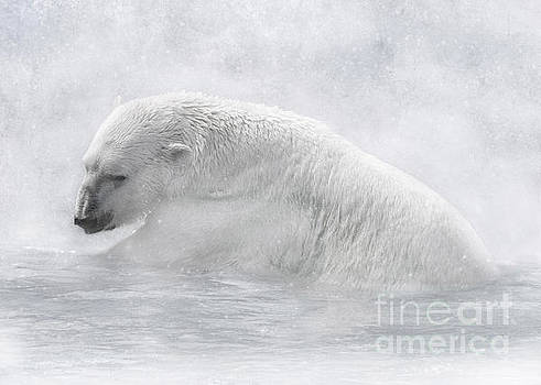 Icy Waters by Lynn Jackson