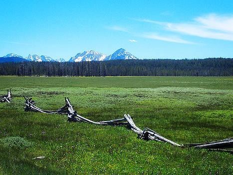 Idaho Countryside by Susan Kinney