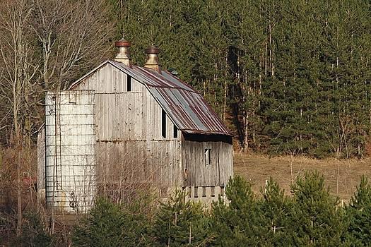 If Barns Could Talk by Teresa McGill