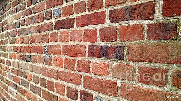 If Walls Could Talk by E B Schmidt