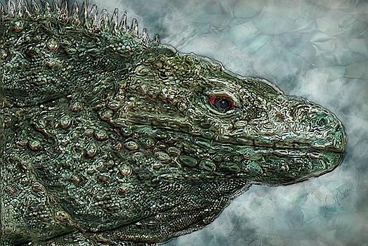 Iguana 2 by Jack Zulli