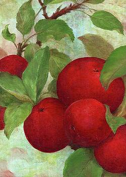 Illustrated Apples by Judith Cheng