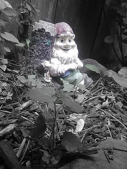 I'm so gnomely by Brynn Ditsche