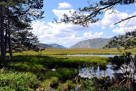 Images of Donegal 8 by Richard Swarbrick