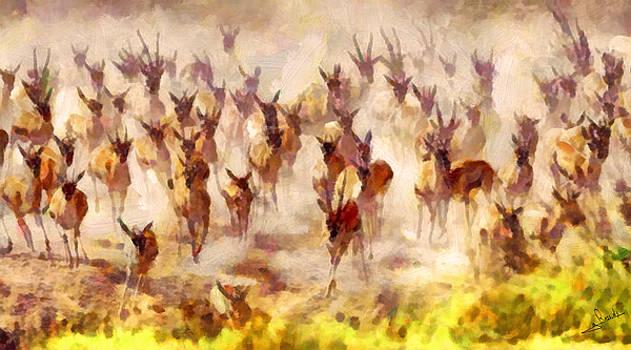 Impalas by George Rossidis