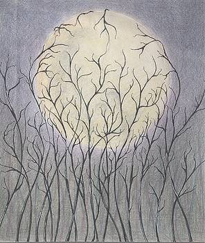 Impulse under the Moon by Chiyuky Itoga