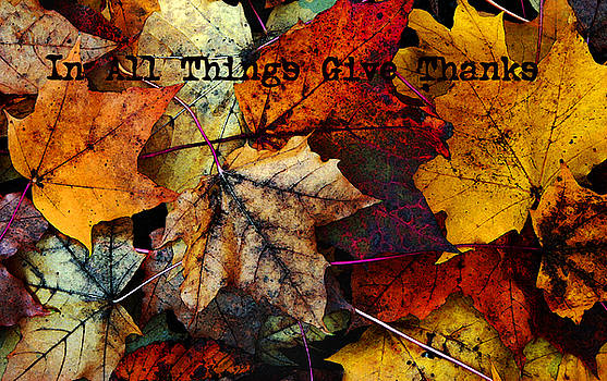 In All Things Give Thanks by Joanne Coyle