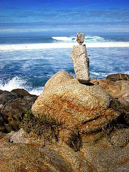 Joyce Dickens - In Balance In Pacific Grove Two
